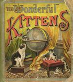 The wonderful kittens