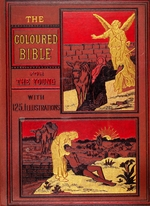Coloured Bible for the young