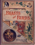 Beasts and birds of Africa