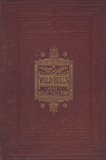 The wild bells and why they rang