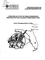 A preliminary study on timing phosphorus fertilization for caladium tuber production