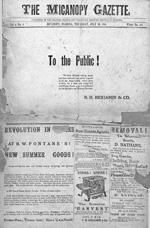 The Micanopy gazette