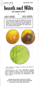 Insects and mites of Florida citrus
