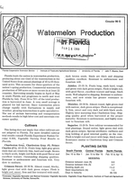Watermelon production in Florida