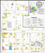 Insurance maps of Wauchula, Florida