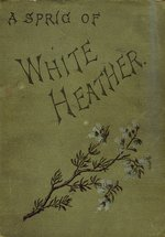A sprig of white heather
