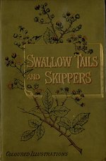 Swallow-tails and skippers
