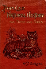 Popular natural history for boys and girls