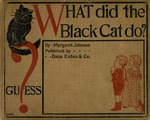 What did the black cat do?