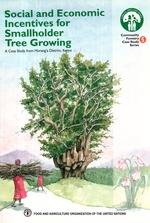 Social and economic incentives for smallholder tree growing