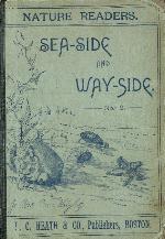 Sea-side and way-side
