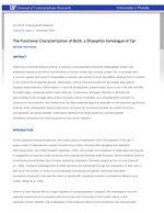 The Functional Characterization of Bx34, a Drosophila homologue of Tpr