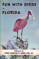 Fun with birds in Florida