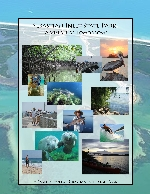 """Sebastian Inlet State Park : """"a vision of tomorrow"""""""