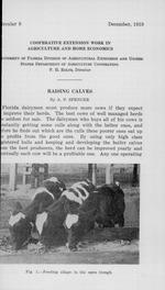 Raising calves /