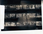 [Negatives showing the features and crew of the excavation at the De Mesa Sanchez House]