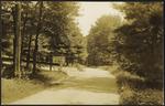 329 Co. Camp No. 51